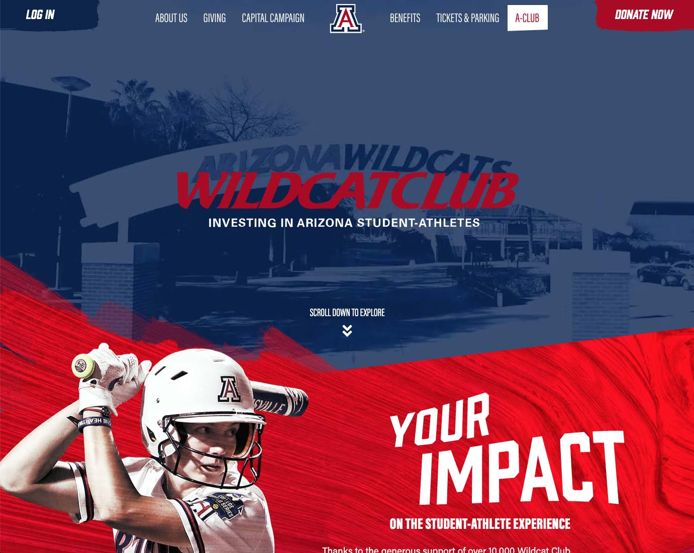 Wildcat Club Fundraising Website | <a href='https://wildcatclub.org/' target='_blank'>Visit Site <i class='nc-icon-glyph arrows-1_share-91'></i></a><br><span>University of Arizona</span>