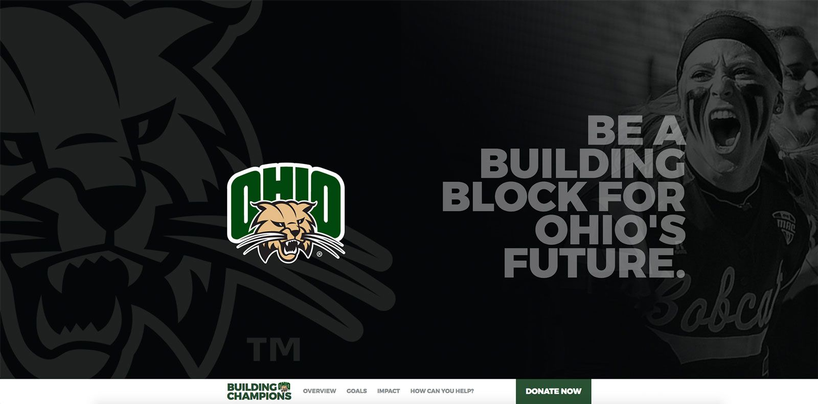 Fundraising Campaign Website | <a href='http://bobcatchampions.com/' target='_blank'>Visit Site <i class='nc-icon-glyph arrows-1_share-91'></i></a><br><span>Ohio University</span>