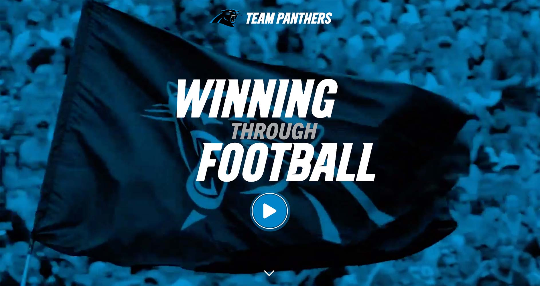 Team Panthers Website | <a href='https://teampanthers.com/' target='_blank'>Visit Site <i class='nc-icon-glyph arrows-1_share-91'></i></a><br><span>Carolina Panthers</span>